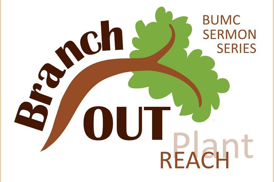 Branch Out Image